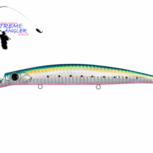 Anchovy-1-500x417